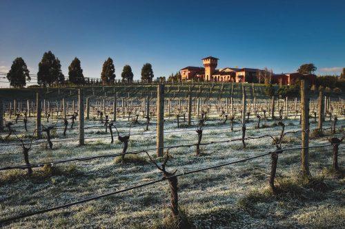 Winery Photography Marlborough