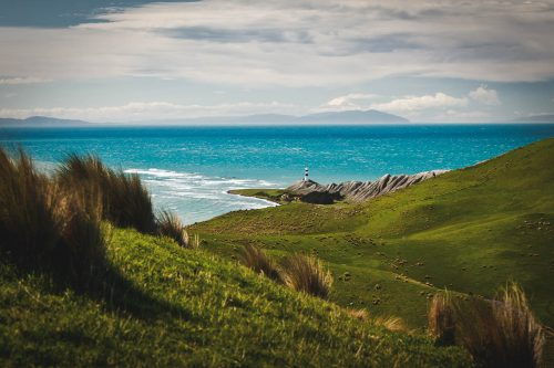 Marlborough Scenic Photography - Cape Campbell