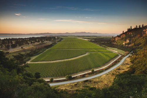 Winery Scenic Images