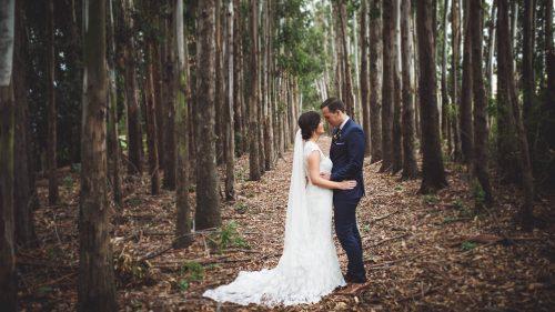 Bride and Groom - Blenheim